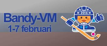 Bandy-VM 2016
